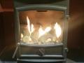 fireline-fx5w-gas